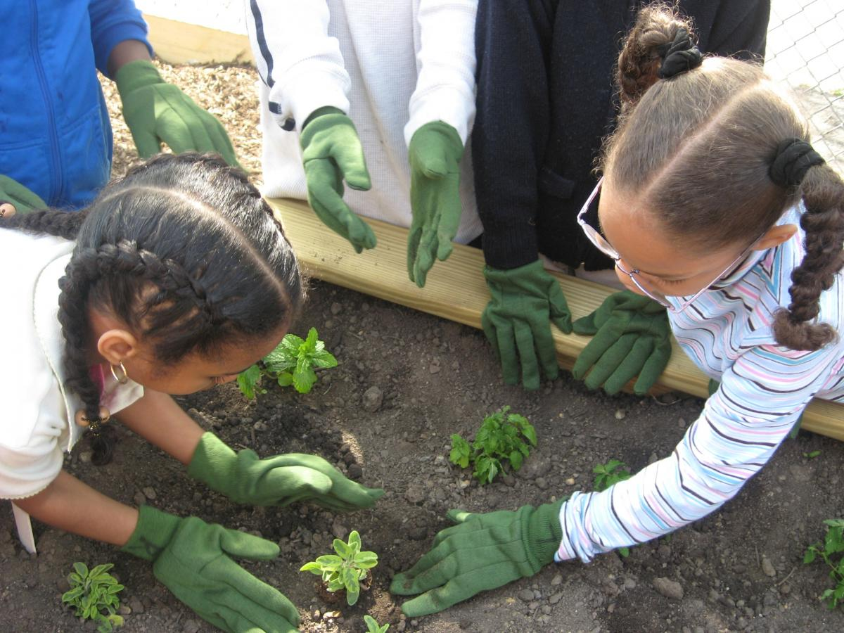 Urban agriculture isles inc for Gardening with children
